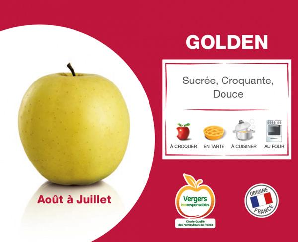 fiche pomme golden