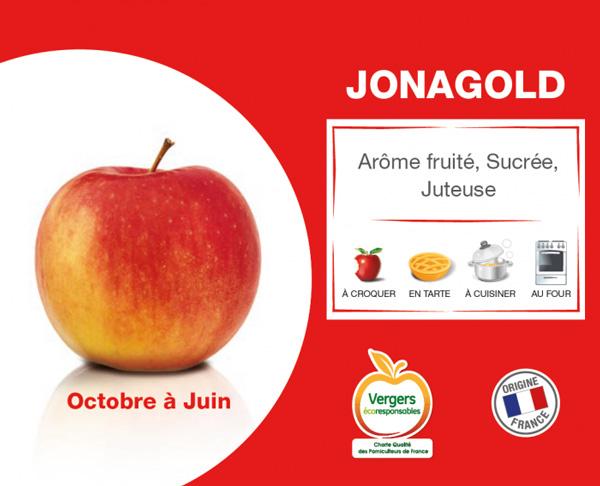 fiche pomme jonagold