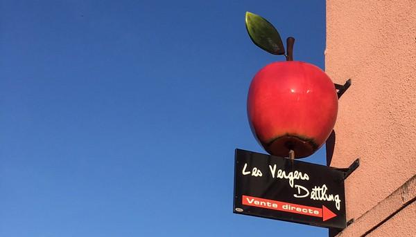 Enseigne en forme de pomme de la ferme et vergers Dettling à Westhoffen an Alsace